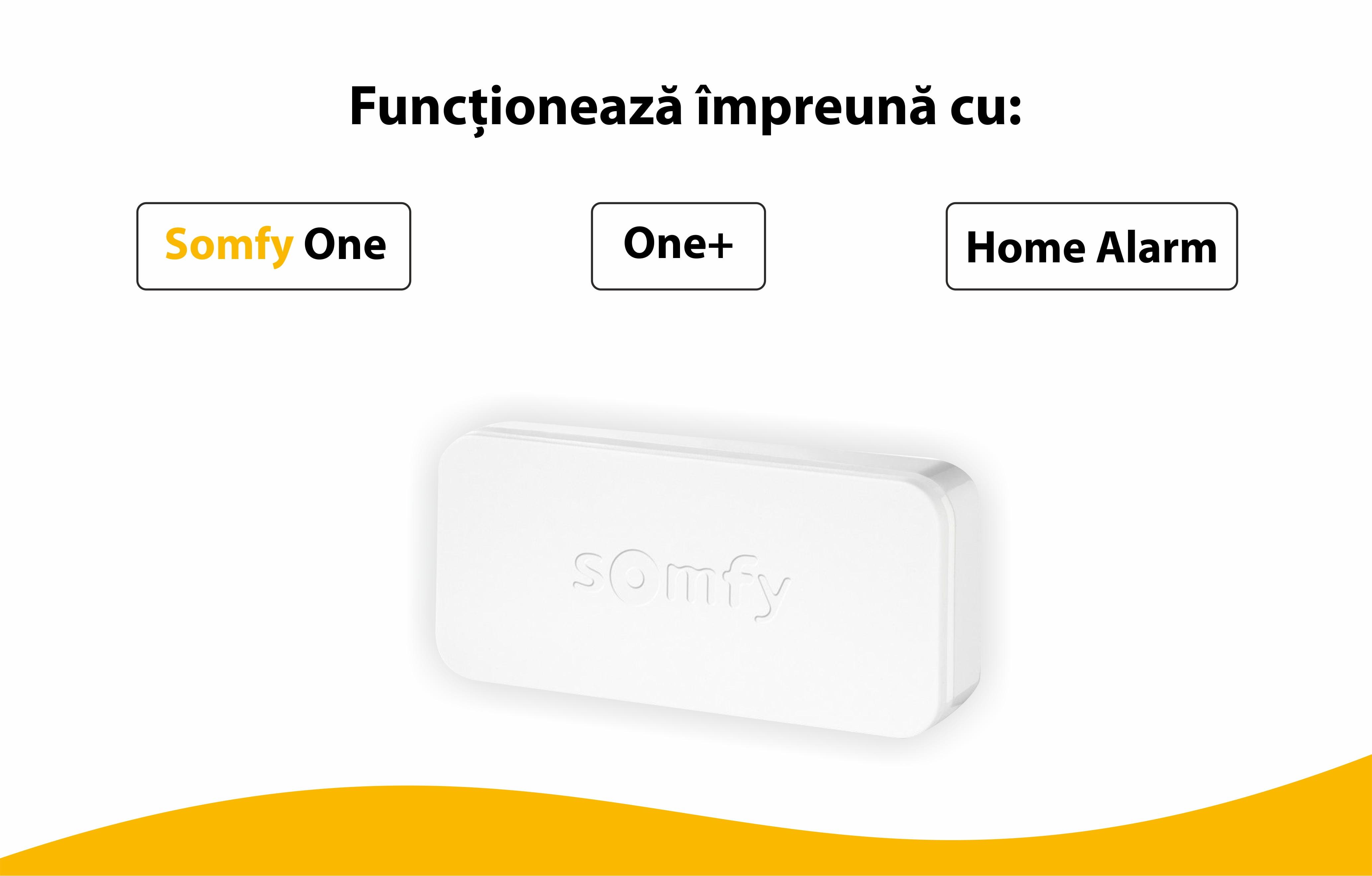 Intellitag™ Senzor pentru usa/fereastra interior sau exterior, Compatibil cu Somfy One, One+, Home Alarm 23